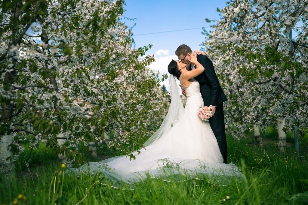 hochzeit_wedding_tirol_037_dianapeter_photography_hochzeitsfotografie_portraitfotografie__m3_8740